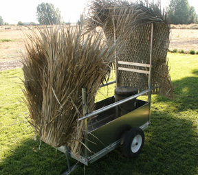 cart-grass.jpg
